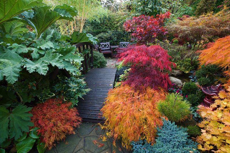 Сад и участок в  цветах:   Коричневый, Серый, Темно-зеленый, Черный.  Сад и участок в  .