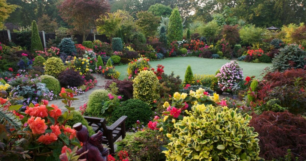 15 лучших осенних садов и советы по планированию участка