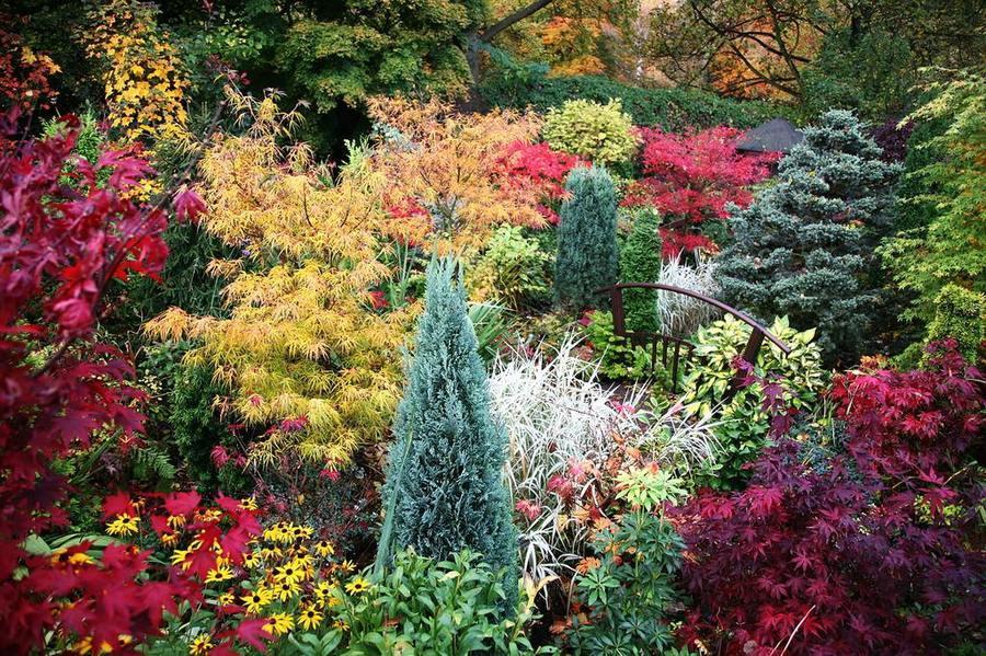 Сад и участок в  цветах:   Серый, Темно-зеленый, Темно-коричневый, Черный.  Сад и участок в  .