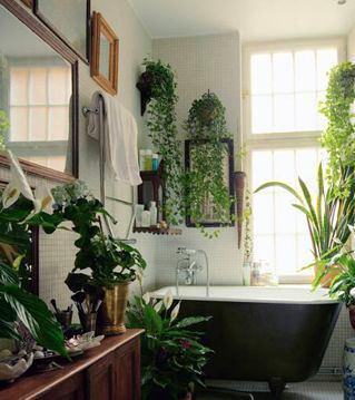 Мебель и предметы интерьера в цветах: светло-серый, белый, темно-зеленый, бежевый. Мебель и предметы интерьера в стиле эклектика.