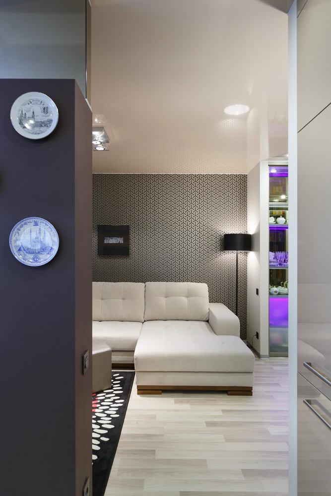Гостиная, холл в цветах: серый, светло-серый, белый, темно-коричневый, коричневый. Гостиная, холл в стилях: хай-тек, скандинавский стиль.