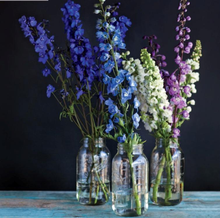 в  цветах:   Бирюзовый, Светло-серый, Серый, Синий, Фиолетовый.  в  .