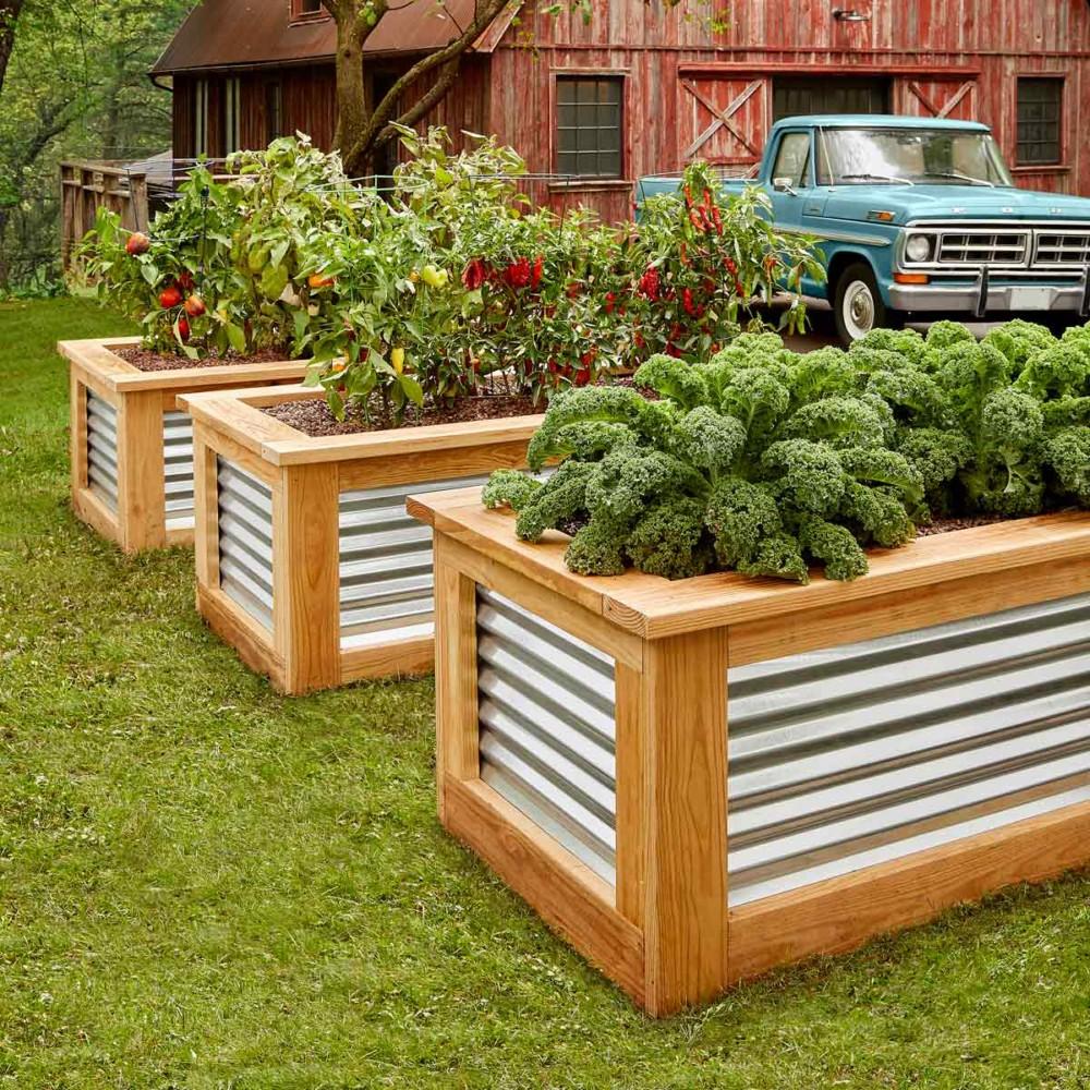 Красивый огород своими руками: стильные грядки — это просто